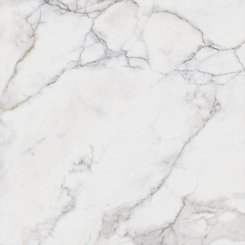80x80 Calacatta Beyaz Fon HonedTouch
